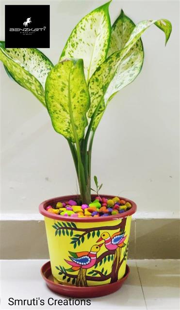 8 Inch Colorful Hand Painted Planters - BENZKART